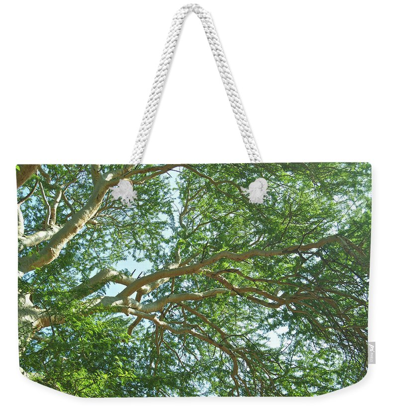 Canopy Weekender Tote Bag featuring the photograph Rainforest Canopy by Michael Peychich