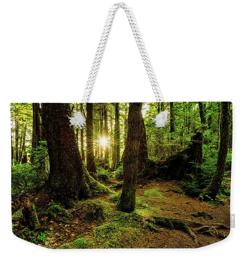 Rainforest Weekender Tote Bag featuring the photograph Rainforest Path by Chad Dutson