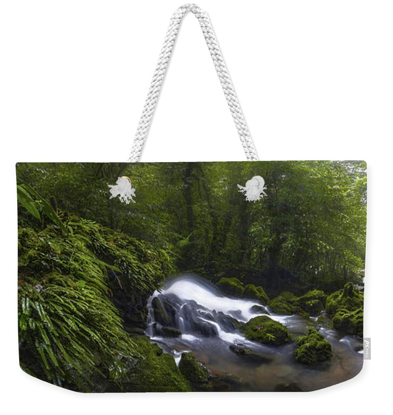 River Weekender Tote Bag featuring the photograph Rainforest Riverflow Scene by Luis Lyons
