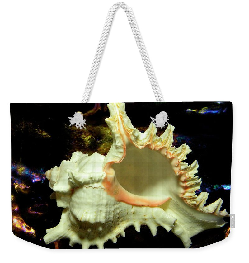 Frank Wilson Weekender Tote Bag featuring the photograph Rams Horn Seashell by Frank Wilson