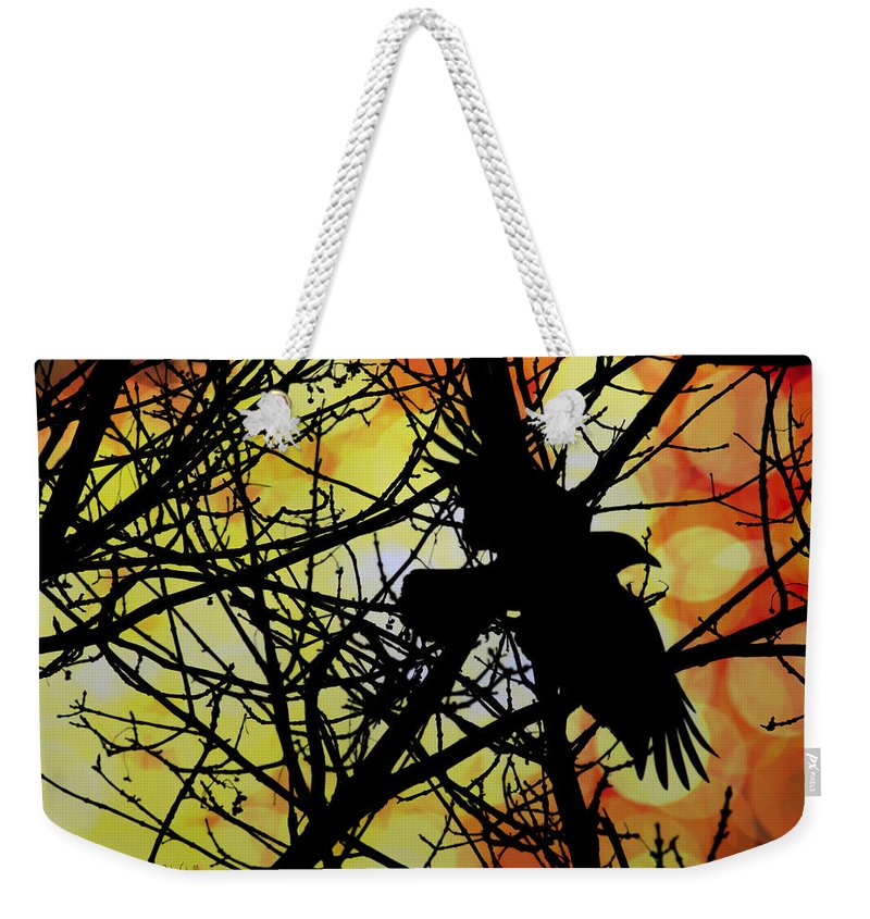 Raven Weekender Tote Bag featuring the photograph Raven by Bob Orsillo