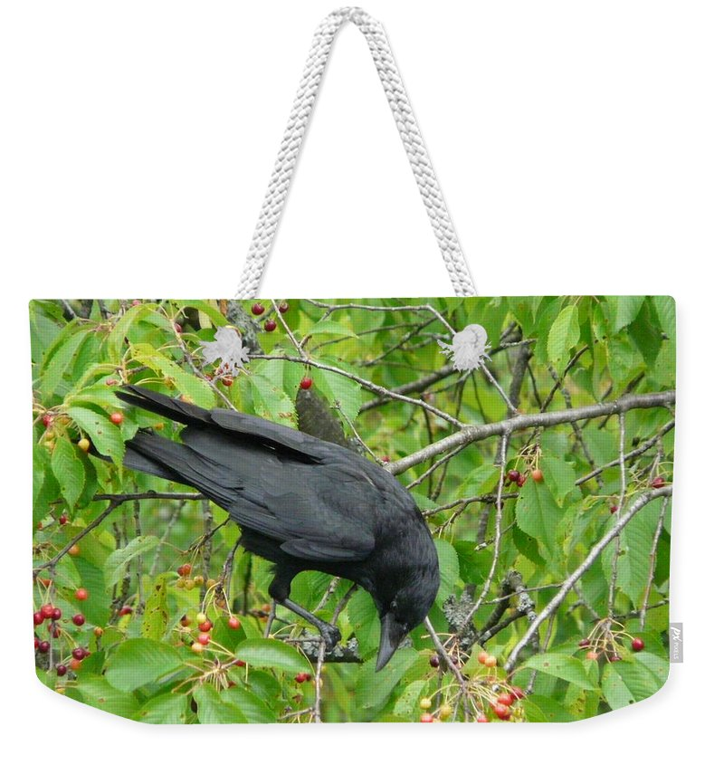 Bird Weekender Tote Bag featuring the photograph Raven In The Cherry Tree by Valerie Ornstein