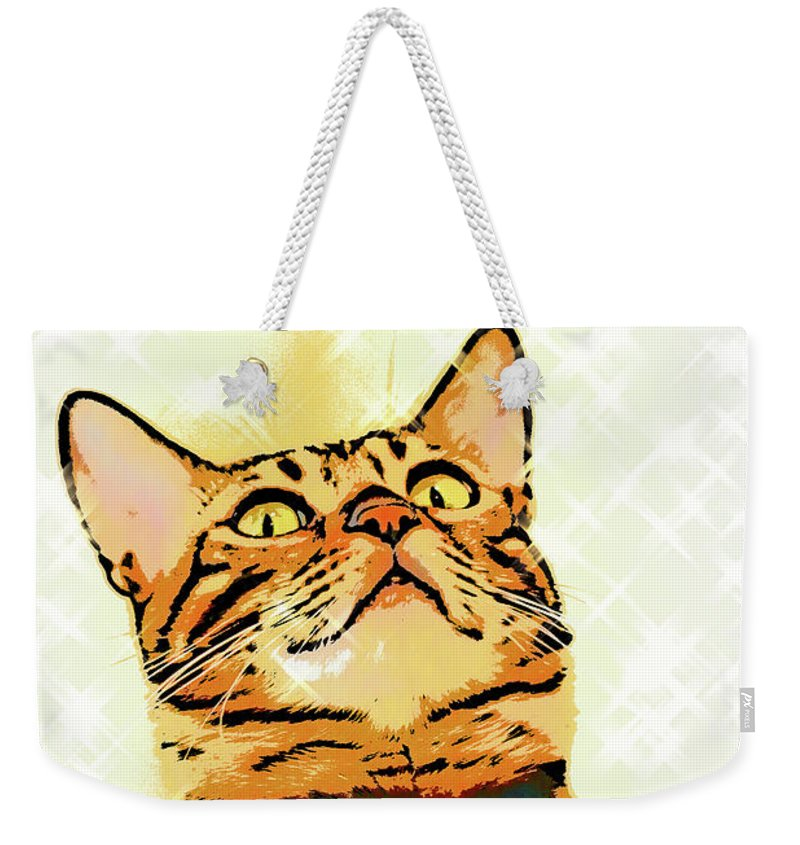 Cat Weekender Tote Bag featuring the photograph Ravi Series #1 by Vicki Podesta