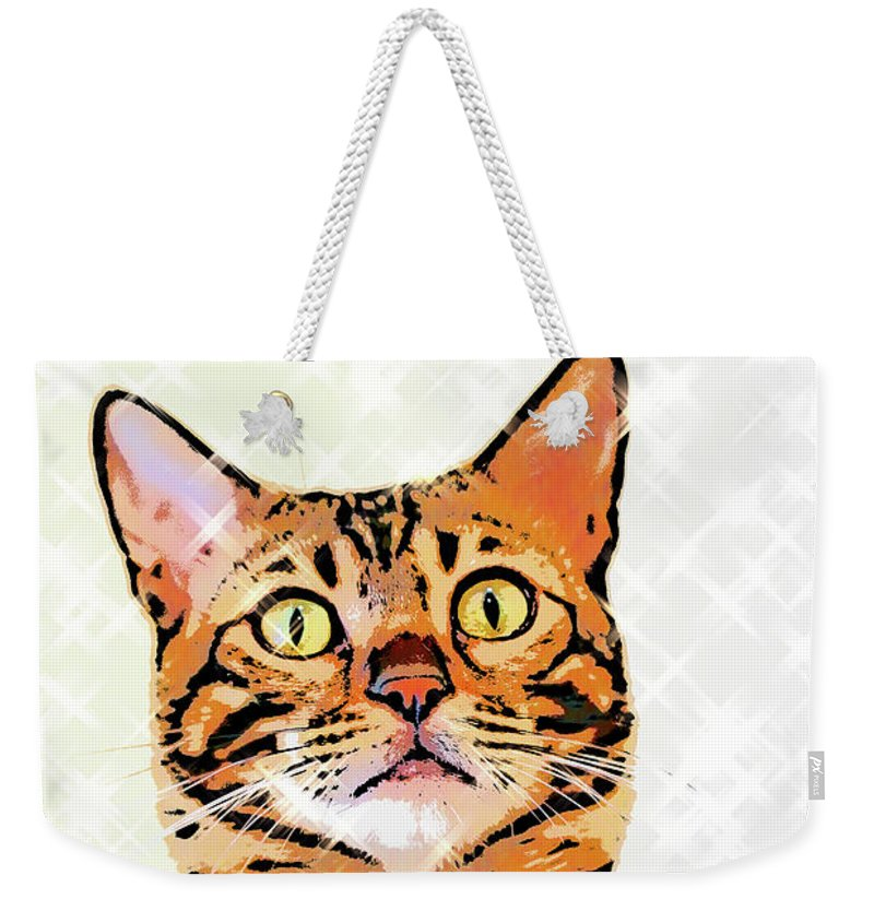 Cat Weekender Tote Bag featuring the photograph Ravi Series #2 by Vicki Podesta