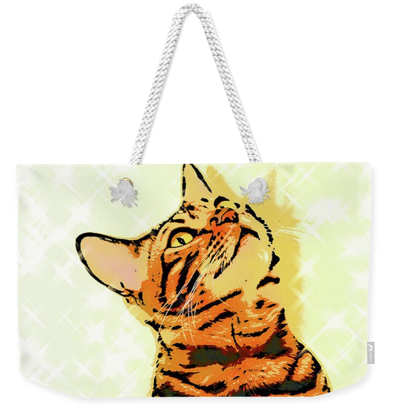 Cat Weekender Tote Bag featuring the photograph Ravi Series #7 by Vicki Podesta