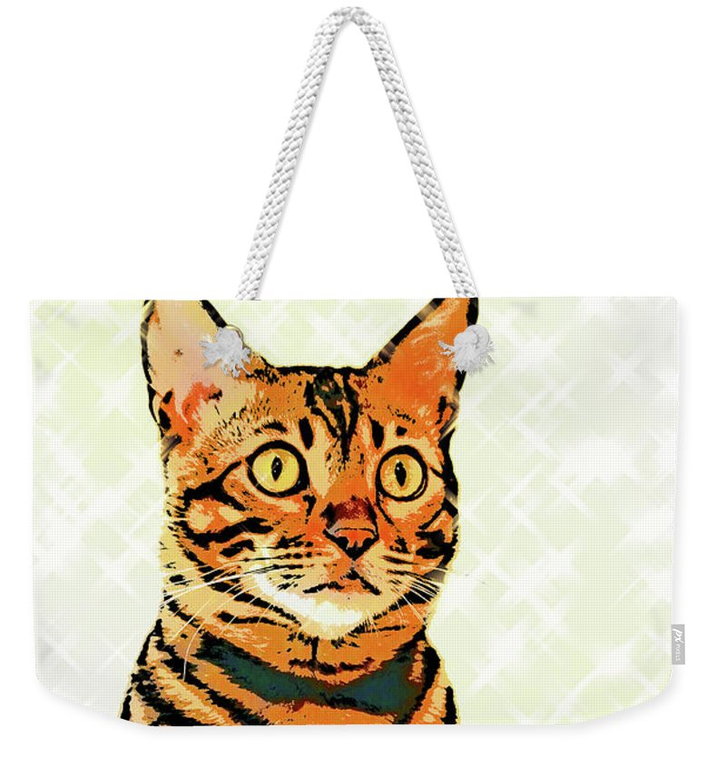 Cat Weekender Tote Bag featuring the photograph Ravi Series #8 by Vicki Podesta