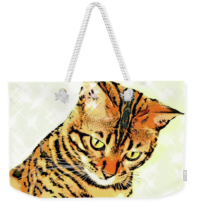 Cat Weekender Tote Bag featuring the photograph Ravi Series #3 by Vicki Podesta