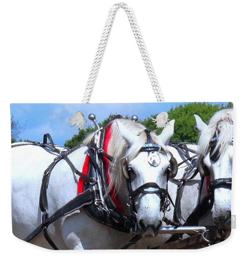 Horse Weekender Tote Bag featuring the photograph Raw Power by Ian MacDonald