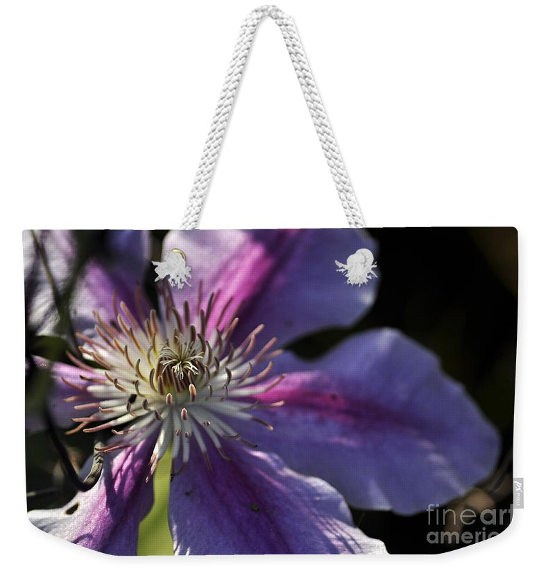 Clay Weekender Tote Bag featuring the photograph Reach For The Sun by Clayton Bruster