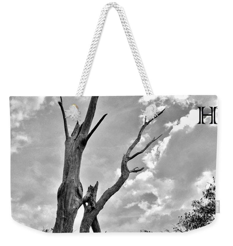 Reach High Weekender Tote Bag featuring the photograph Reach High by Lisa Renee Ludlum