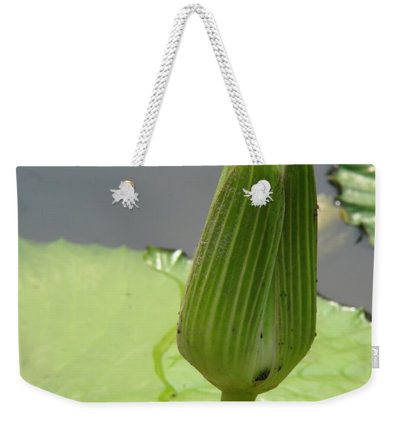 Lilly Weekender Tote Bag featuring the photograph Ready To Bloom by Amanda Barcon