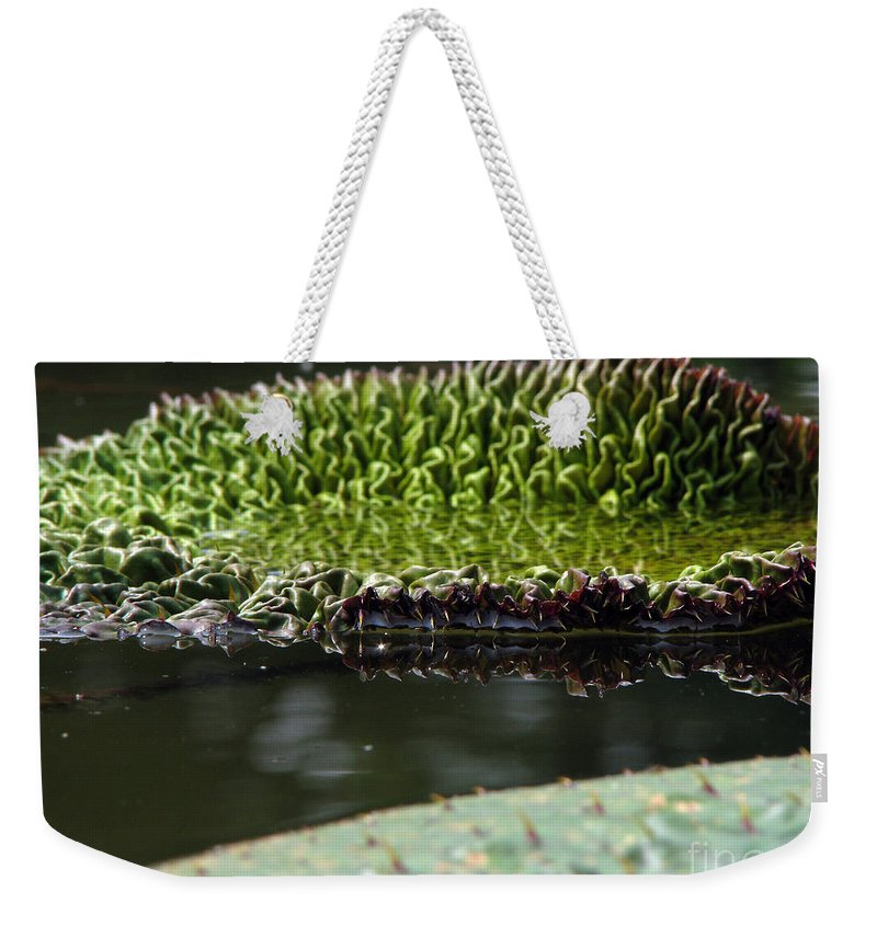 Lillypad Weekender Tote Bag featuring the photograph Ready To Spread by Amanda Barcon