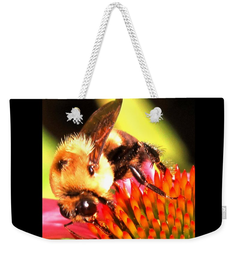 Bee Weekender Tote Bag featuring the photograph Really Getting Into It by Ian MacDonald