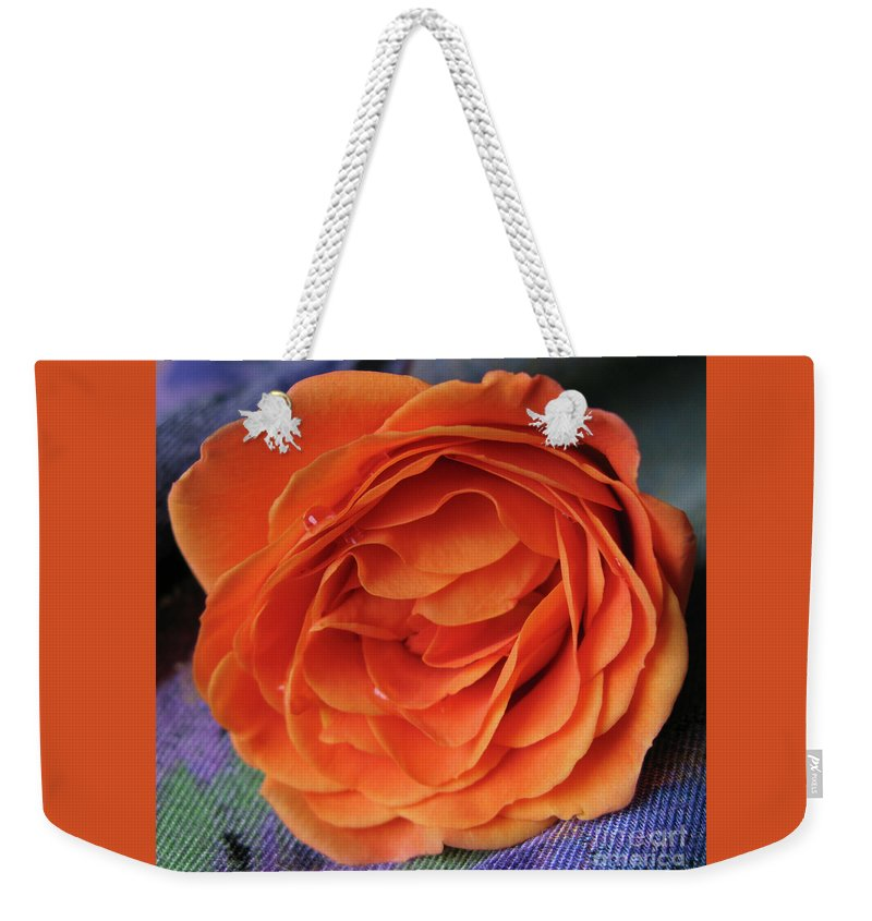 Rose Weekender Tote Bag featuring the photograph Really Orange Rose by Ann Horn