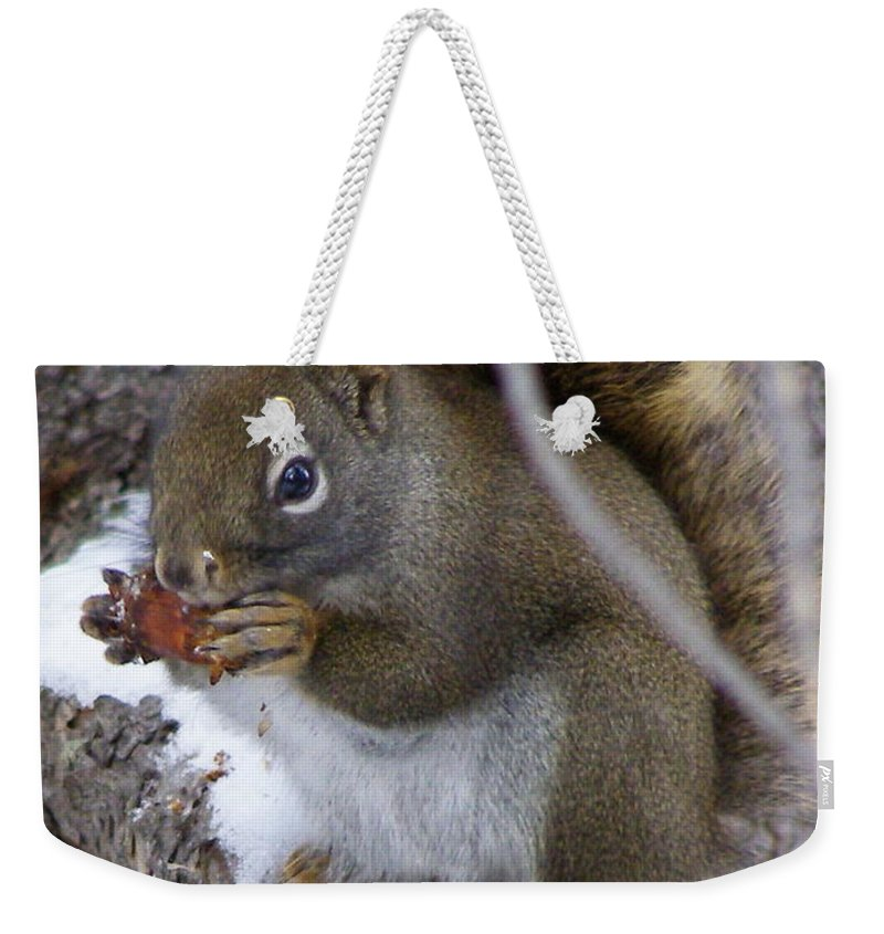 Squirrel Weekender Tote Bag featuring the photograph Reaping What We Sow by DeeLon Merritt