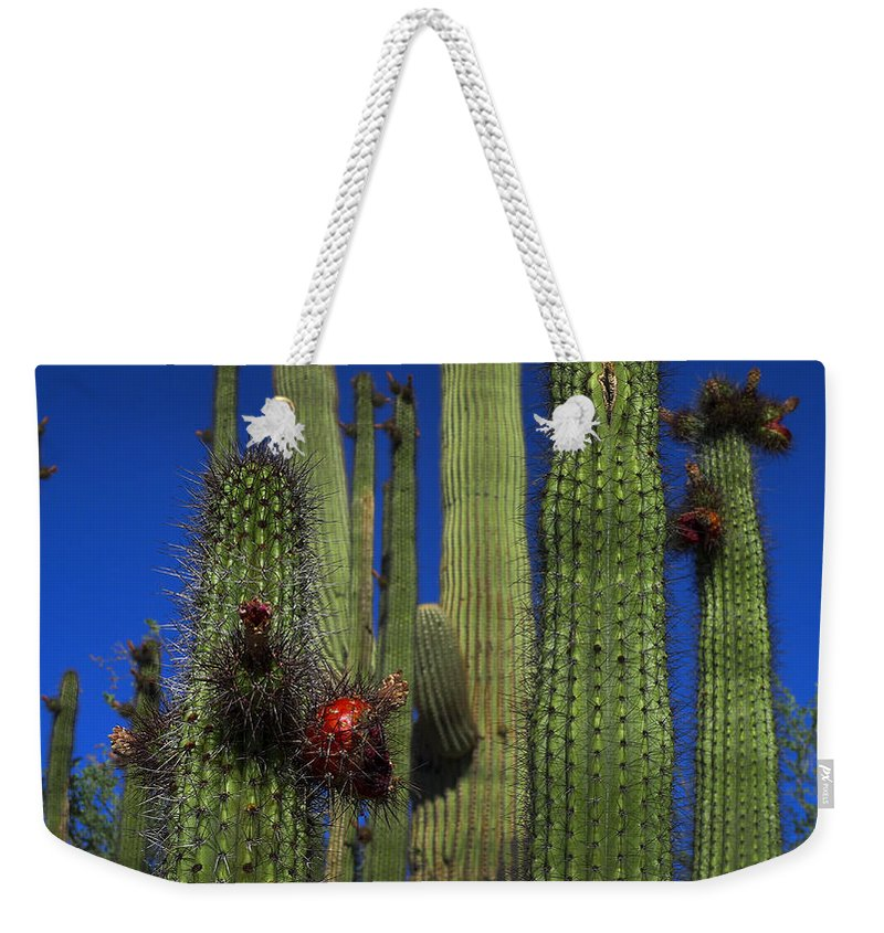 Red Alert Weekender Tote Bag featuring the photograph Red Alert by Skip Hunt