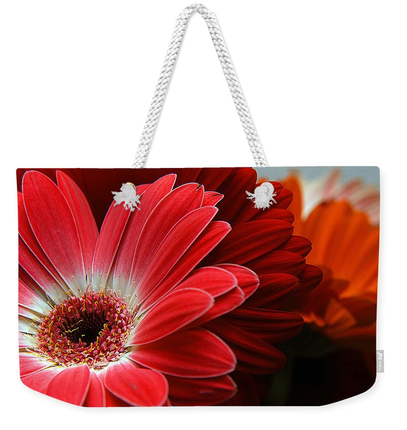 Clay Weekender Tote Bag featuring the photograph Red And Orange Florals by Clayton Bruster