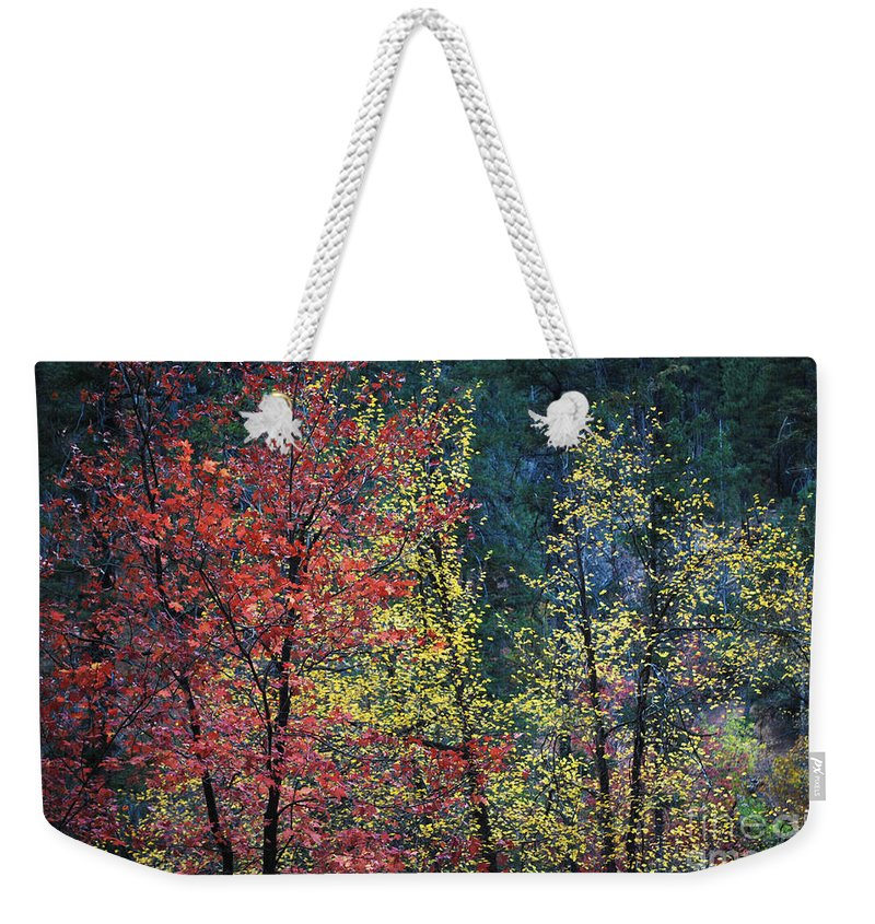 Landscape Weekender Tote Bag featuring the photograph Red And Yellow Leaves Abstract Horizontal Number 1 by Heather Kirk