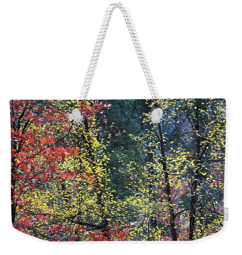 Landscape Weekender Tote Bag featuring the photograph Red And Yellow Leaves Abstract Vertical Number 2 by Heather Kirk