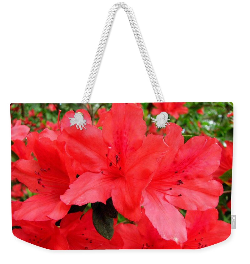 Azalea Weekender Tote Bag featuring the photograph Red Azaleas by J M Farris Photography