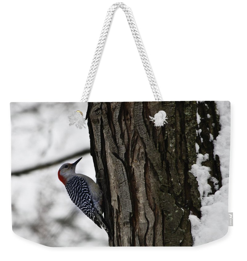 Woodpecker Weekender Tote Bag featuring the photograph Red Bellied Woodpecker No 1 by Teresa Mucha
