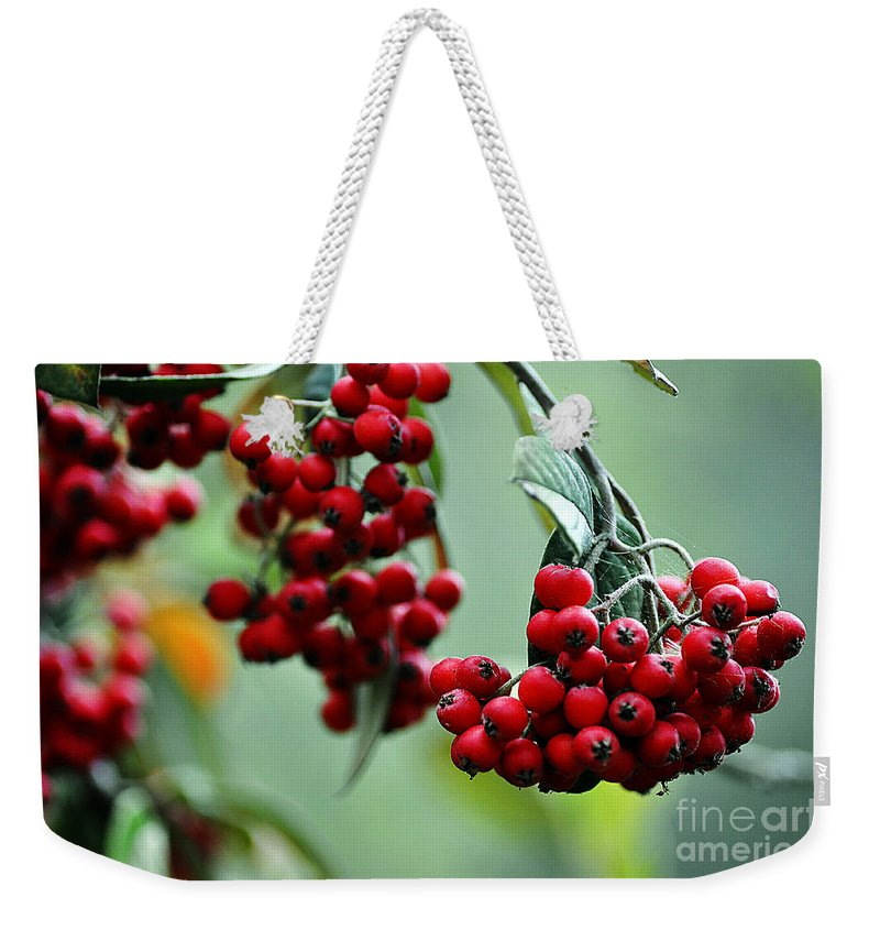 Clay Weekender Tote Bag featuring the photograph Red Berries by Clayton Bruster