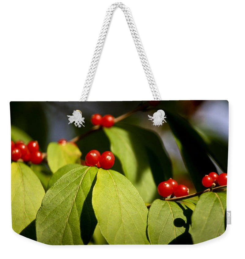 Red Weekender Tote Bag featuring the photograph Red Berries by Teresa Mucha