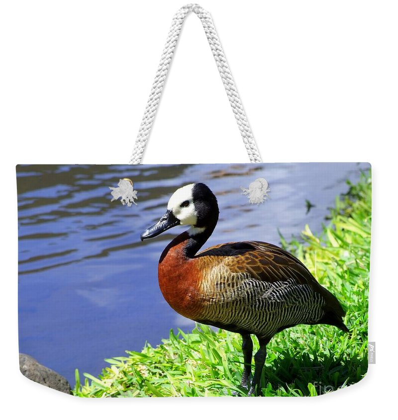 Red Weekender Tote Bag featuring the photograph Red Breasted Wood Duck by Mary Deal