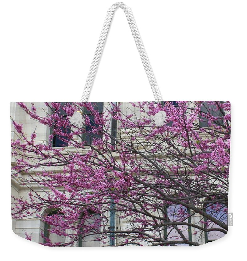 Red Buds Weekender Tote Bag featuring the photograph Red Buds And San Antonio City Hall by Carol Groenen