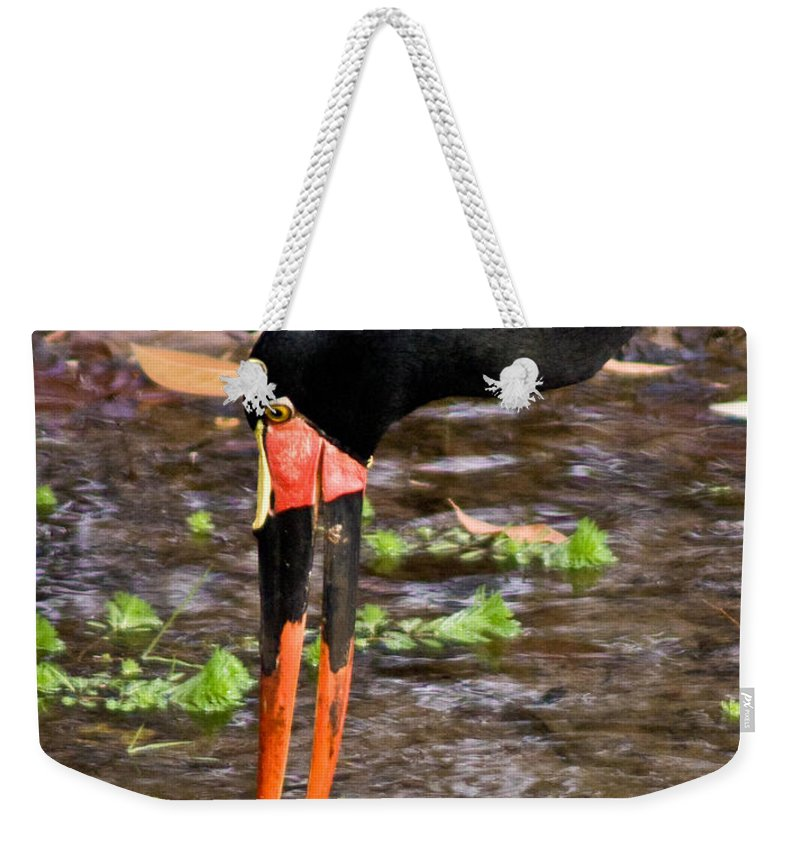 Red Weekender Tote Bag featuring the photograph Red-crowned Crane by Douglas Barnett