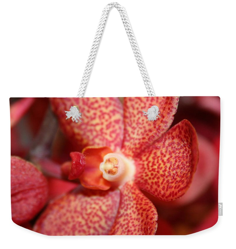 Flowers Macro Nature Digital Photograph Red Vibrant White Weekender Tote Bag featuring the photograph Red Dots by Linda Sannuti