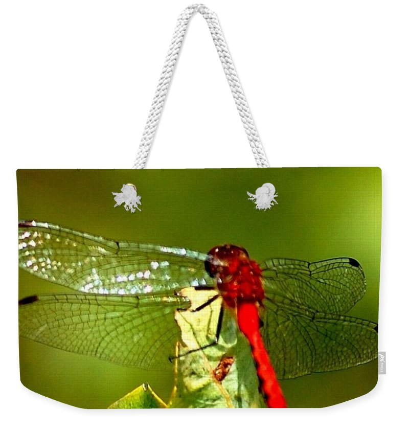 Digital Photograph Weekender Tote Bag featuring the photograph Red Dragon 2 by David Lane
