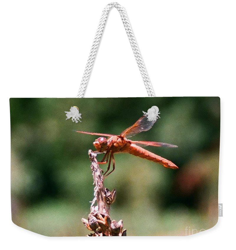 Dragonfly Weekender Tote Bag featuring the photograph Red Dragonfly II by Dean Triolo