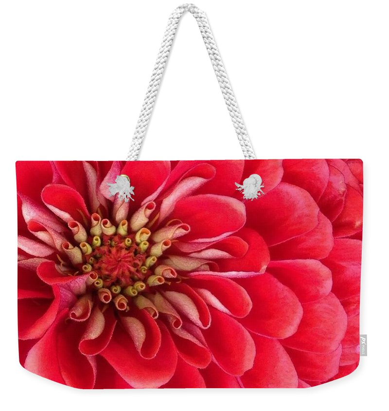 Flora Weekender Tote Bag featuring the photograph Red Explosion by Bruce Bley