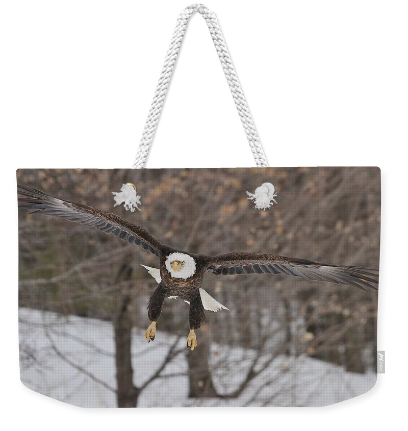 Bald Eagle Weekender Tote Bag featuring the photograph Red Feather Touchdown by Teresa McGill