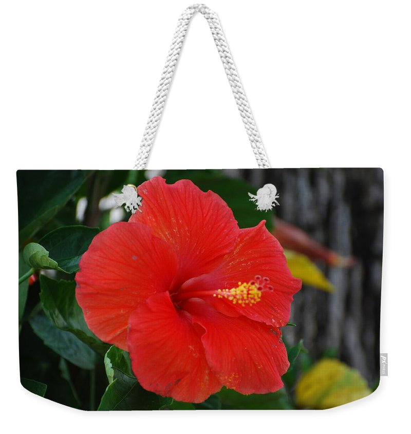 Flowers Weekender Tote Bag featuring the photograph Red Flower by Rob Hans