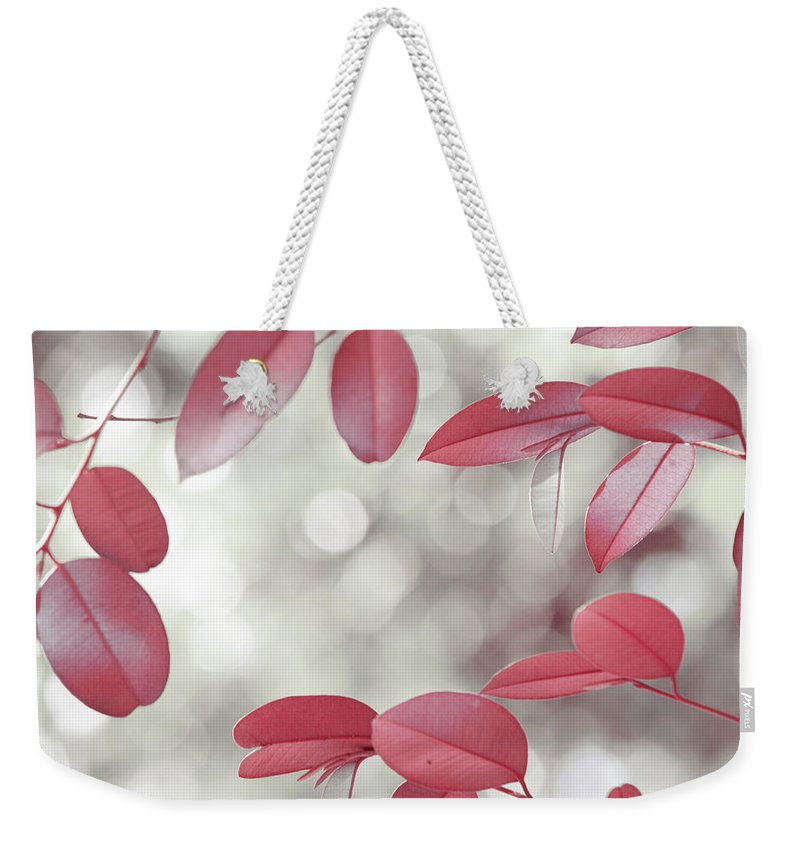 Jenny Rainbow Fine Art Photography Weekender Tote Bag featuring the photograph Red Foliage. Silver Light by Jenny Rainbow