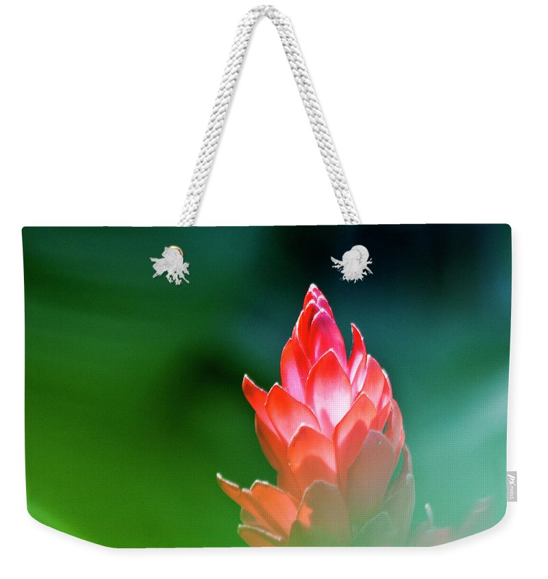 Ginger Flower Weekender Tote Bag featuring the photograph Red Ginger by Heiko Koehrer-Wagner