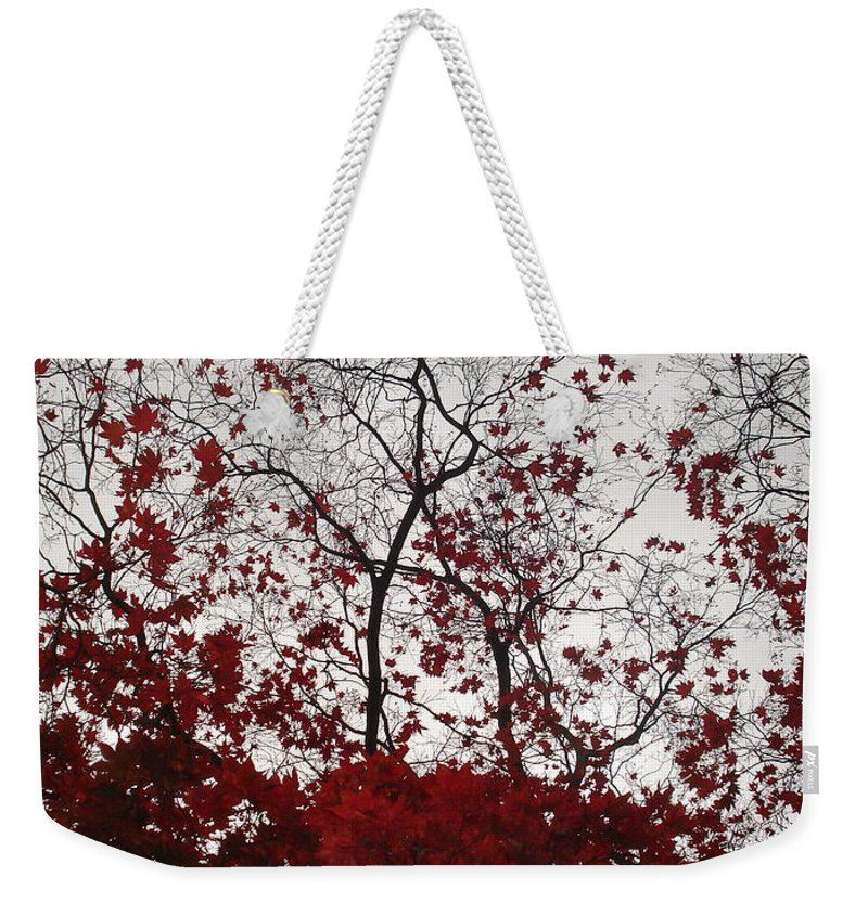 Nature Weekender Tote Bag featuring the photograph Red Glitter by Nelson F Martinez