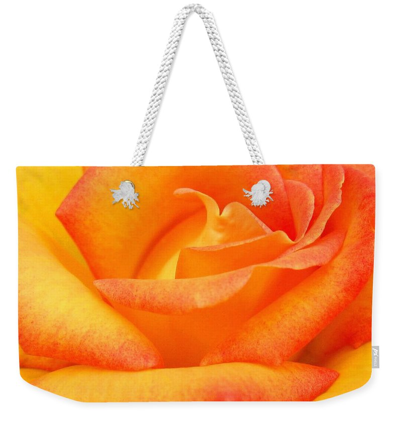 Rose Weekender Tote Bag featuring the photograph Red Gold Rose by Will Borden