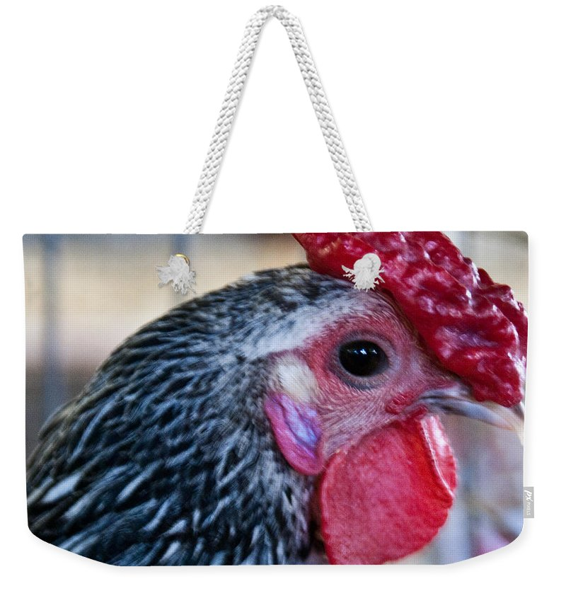Chicken Weekender Tote Bag featuring the photograph Red Hat Chicken by Douglas Barnett