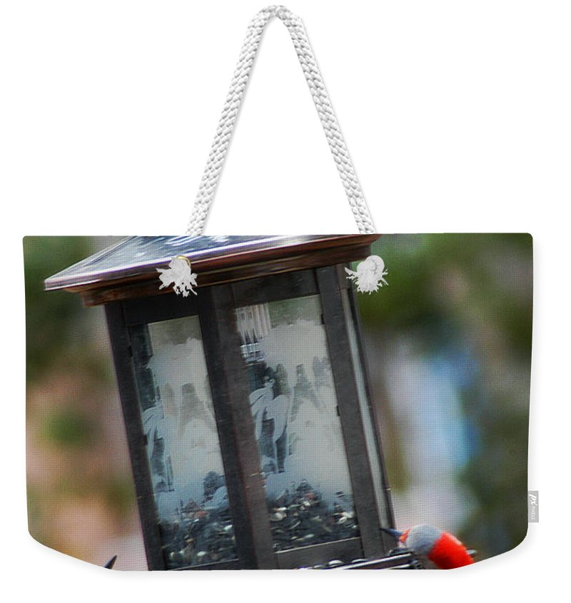Clay Weekender Tote Bag featuring the photograph Red Head Wood Peckers On Feeder by Clayton Bruster