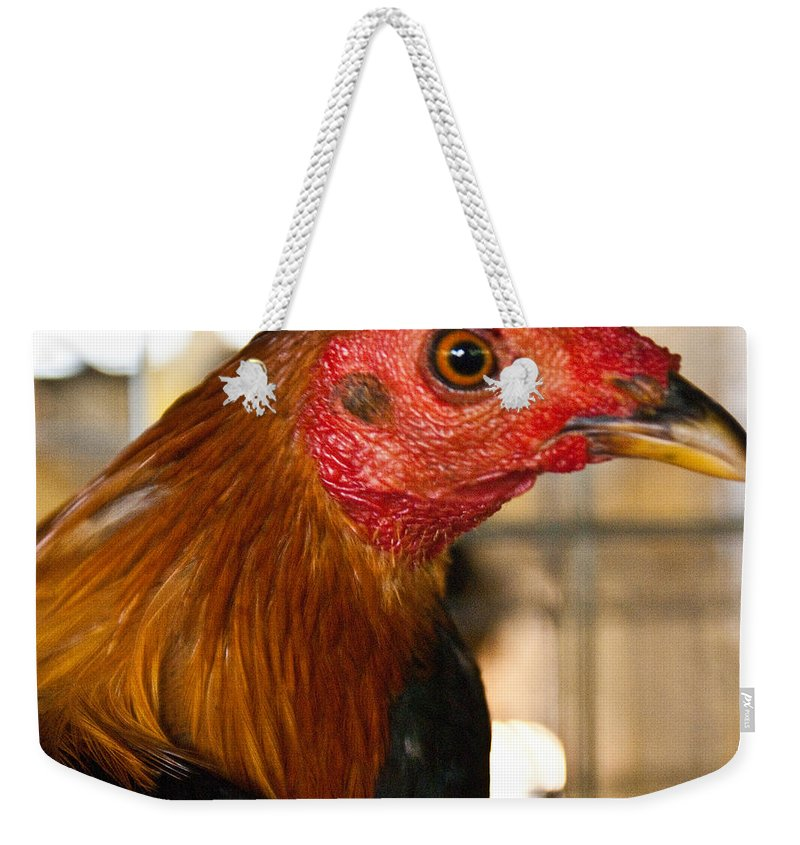 Chicken Weekender Tote Bag featuring the photograph Red Headed Chicken Head by Douglas Barnett