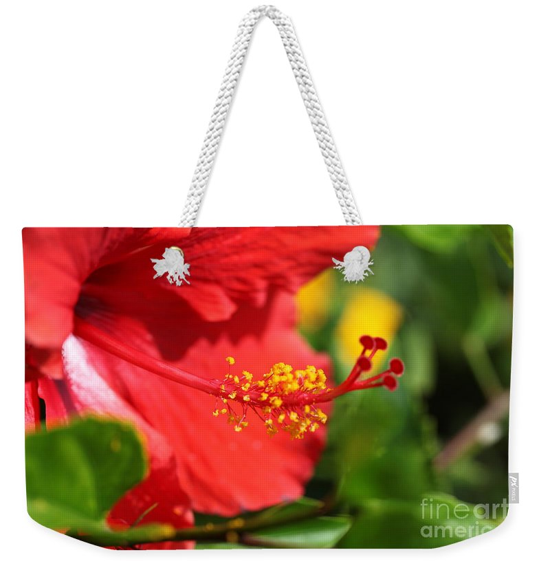 Flowers Weekender Tote Bag featuring the photograph Red Hibiscus And Green by Nadine Rippelmeyer