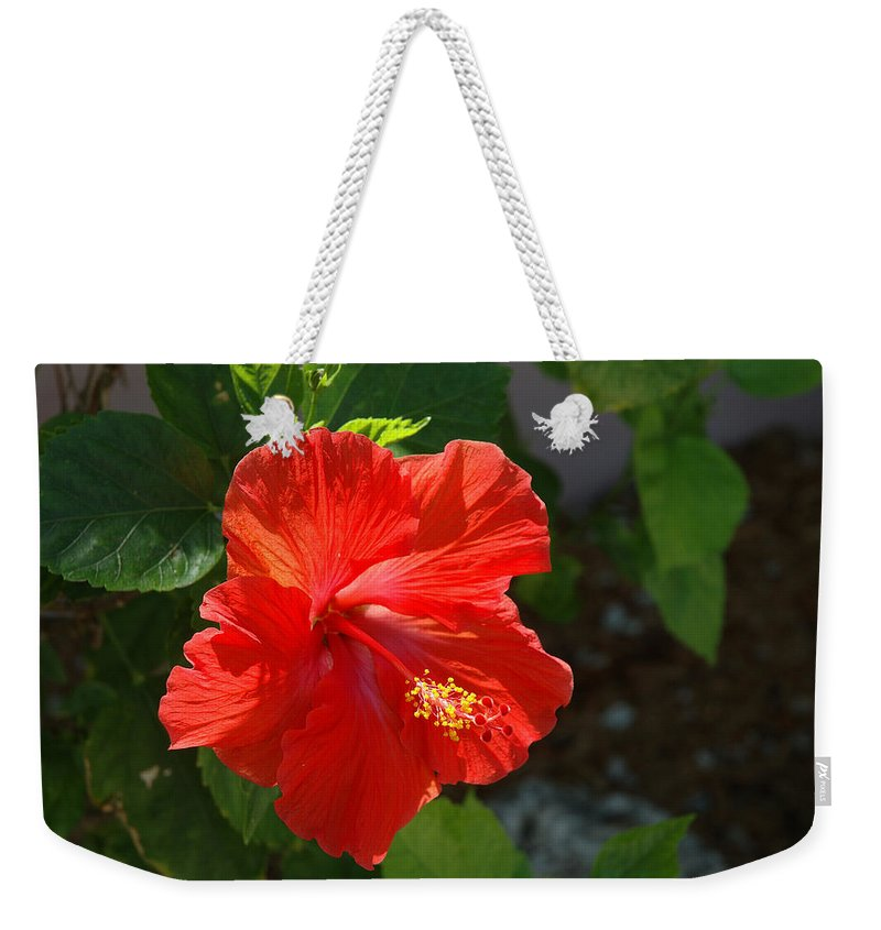 Hibiscus Weekender Tote Bag featuring the photograph Red Hibiscus II by Susanne Van Hulst