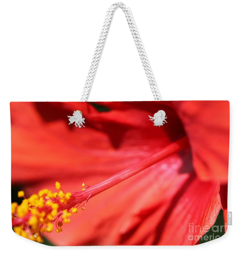 Red Weekender Tote Bag featuring the photograph Red Hibiscus by Nadine Rippelmeyer