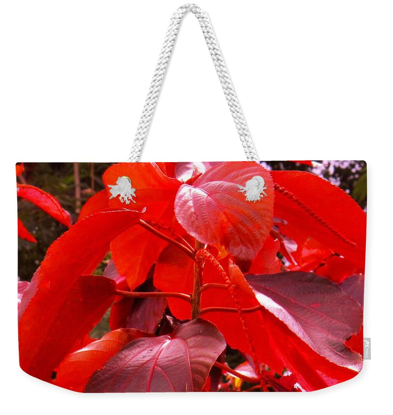 Red Weekender Tote Bag featuring the photograph Red by Ian MacDonald