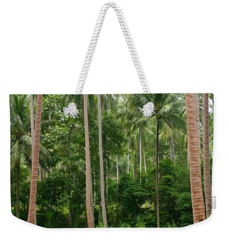 Palm Trees Weekender Tote Bag featuring the photograph Red In The Jungle by Minaz Jantz