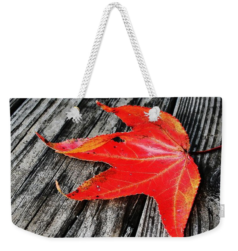 Nature Weekender Tote Bag featuring the photograph Red Leaf by Linda Sannuti