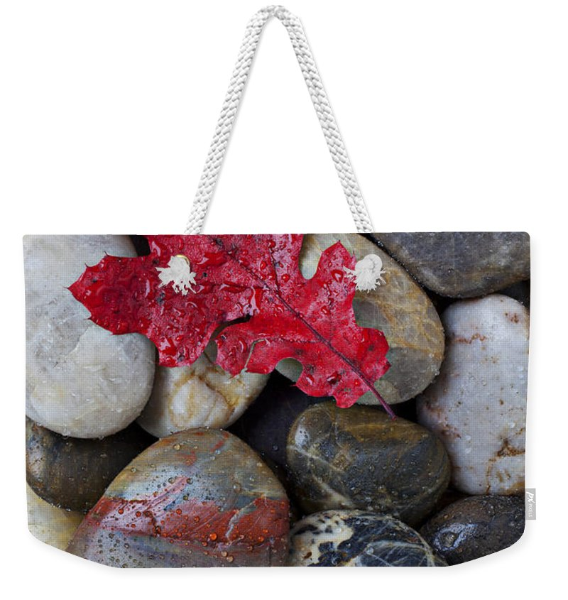 Red Leaf Weekender Tote Bag featuring the photograph Red Leaf Wet Stones by Garry Gay